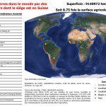 Achats de terres dans le sud global